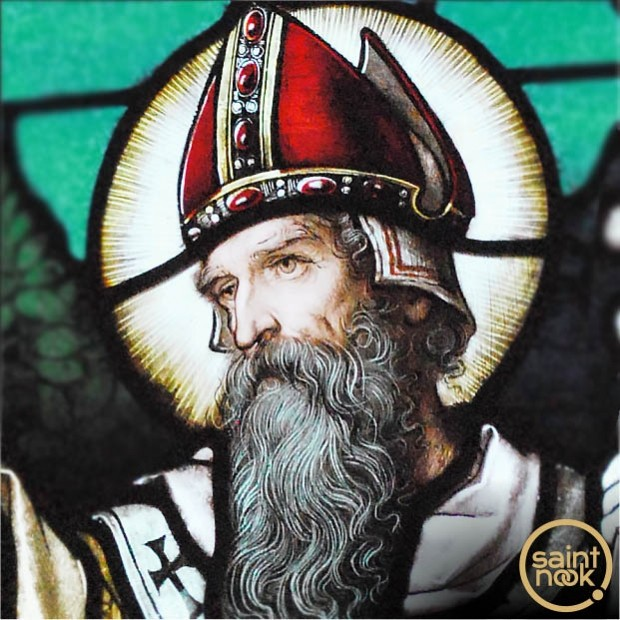 Profile picture of Patrick of Ireland